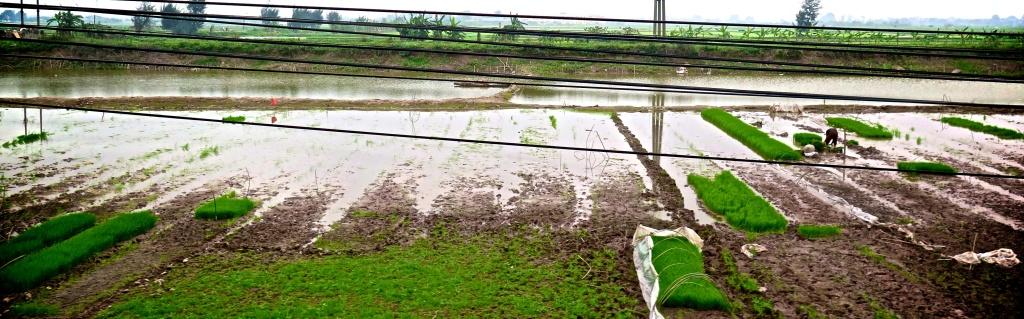 madeau landscape photography train travel vietnam_0093 -