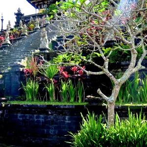 madeau photography bali indonesiaMG_0533 -