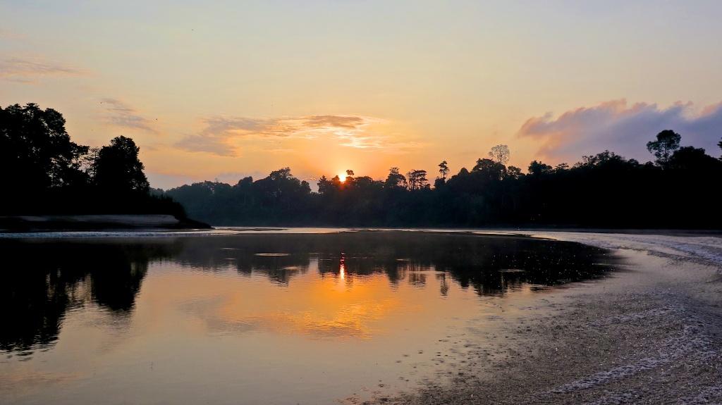 2015madeau vagabond nature malaysia jungle03-25IMG_1928 -