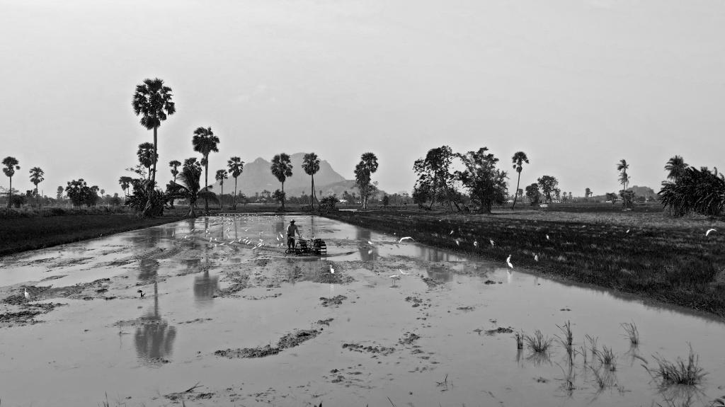 2madeau vagabond asia b/w photography015-03-29IMG_2045 -